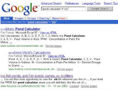 Finding PDF And Excel Documents On Google
